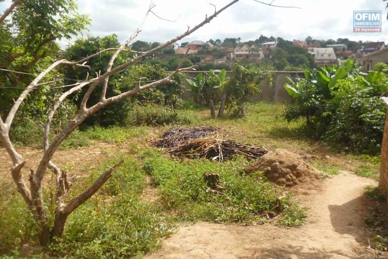 A vendre terrain de 1430 M2 à Andranomena Ambohimanarina