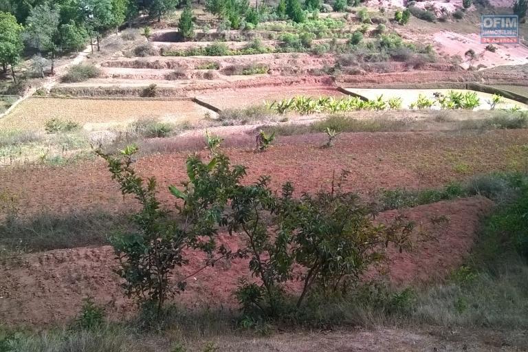 A vendre, un terrain de 4HA, arboré avec deux bâtis, en bord de route à Manandriana Ifasy - Antananarivo