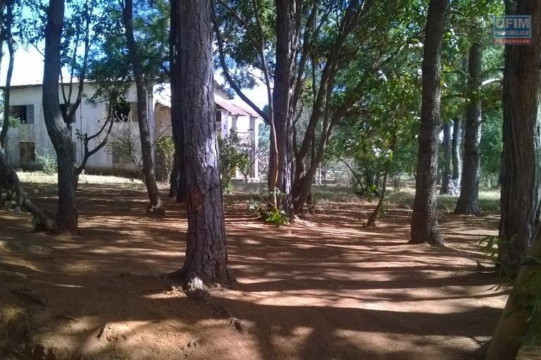 A vendre, un terrain de 3Ha55a10Ca, facile d'accès, en bord de route à Antanambao Avaratra-Antananarivo