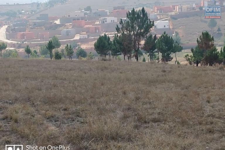 A vendre plusieurs lots de terrains de 500 m2 aménagé  à 10 minutes du lycée francais