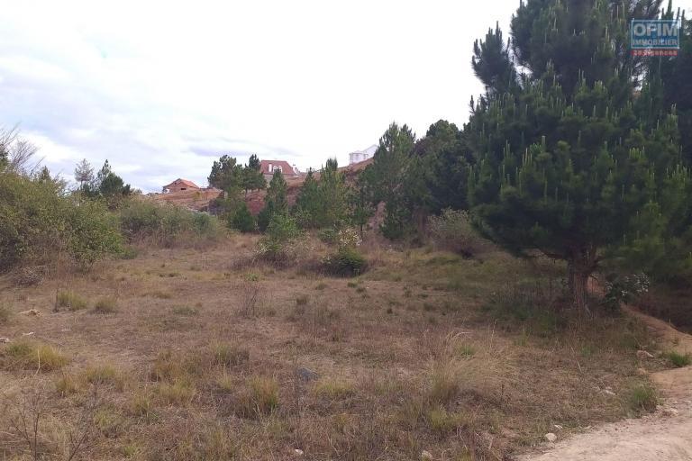 Tres beau terrain de 4236 m2 à Ambohijanaka Amboanjobe