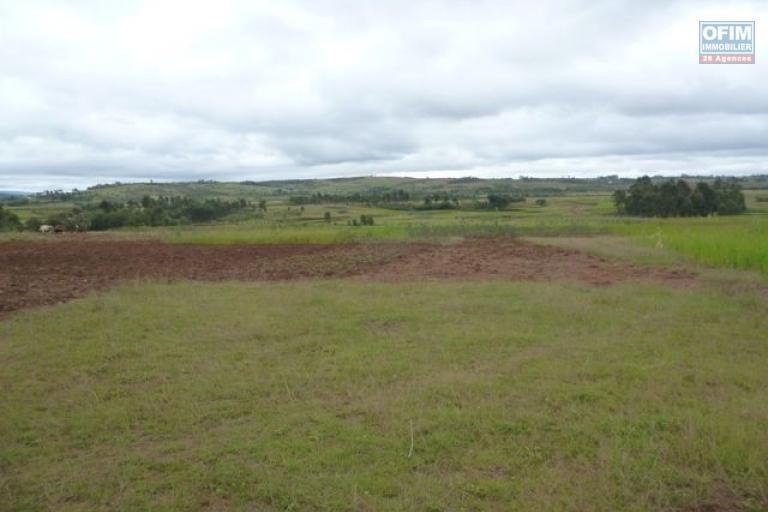 A vendre grand terrain de 77 400 m2 à Ambatolampy