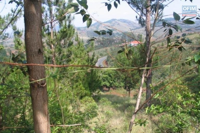 Terrain en bordure de route de l'axe RN3 sur Ambohitrabiby à 20 km du centre ville