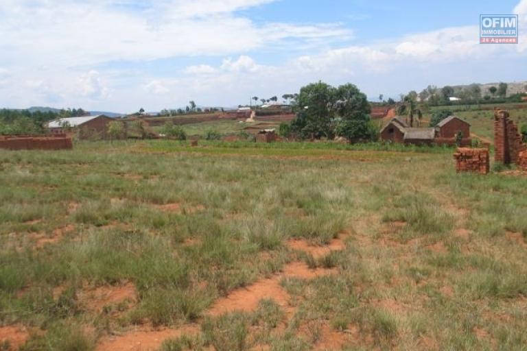 A vendre 1000 m 2 de terrain en très légère pente à Vontovorina