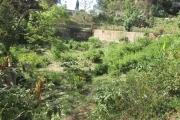 A vendre, un beau terrain de 1930 m2 dans le quartier résidentiel d'Andohanimandroseza