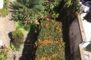 EN ECXLUSIVITE OFIM met vente un immeuble avec un emplacement exceptionnel à Andohan Analakely