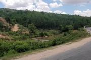 vente terrain de 19Ha 29A 16Ca bord de la route RN7