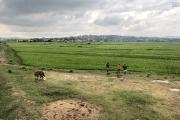 Idéal Investisseur  terrain de 60 000 m2 by pass à vendre