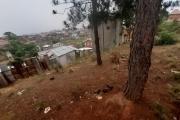 Beau terrain de 516 m2 avec une magnifique vue sur Ambatobe-Antananarivo