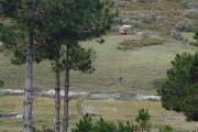 Domaine de 1HA 70 A 50 CA avec vue sur lac à Mantasoa