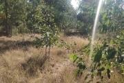 A vendre beau terrain de 874M2 à ivato