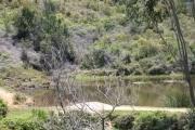 Magnifique coin de paradis de 15 ha à Mantasoa à 1350 Ariary du m2