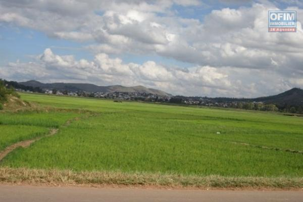 A vendre terrain d'environ 2ha à Manazary Ilafy
