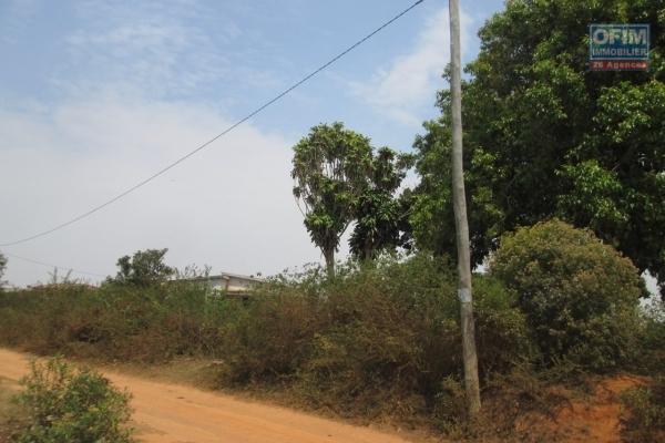 A vendre, un terrain de 4000 m2, plat prêt à bâtir en bord de route principale à Malaza Faravohitra Avaratra