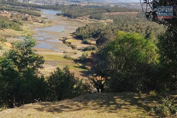 A VENDRE un beau terrain de 5600 m2 sis a Ambatobe vue sur Rova
