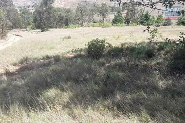 A vendre, un terrain de 1Ha87 en bord de route principale à Moratsiazo Vontovorona