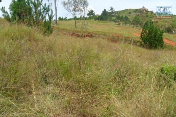A vendre très beau terrain clôturé de 1247 m2 à Ambohidratrimo