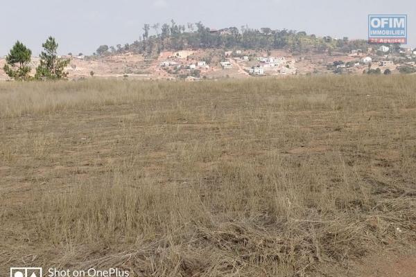 A vendre, terrain à Ambohinambo Talatamaty, vue sur les rizières