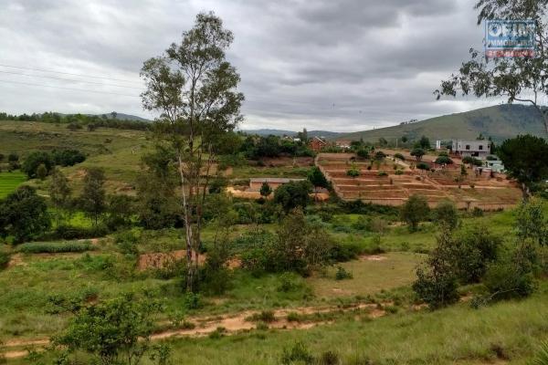 A vendre terrain de 4160 m2 à Tsimahandry - Ambohidratrimo