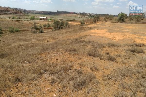 terrain prêt à bâtir - 7ha - Alakamisy Ambohidratrimo