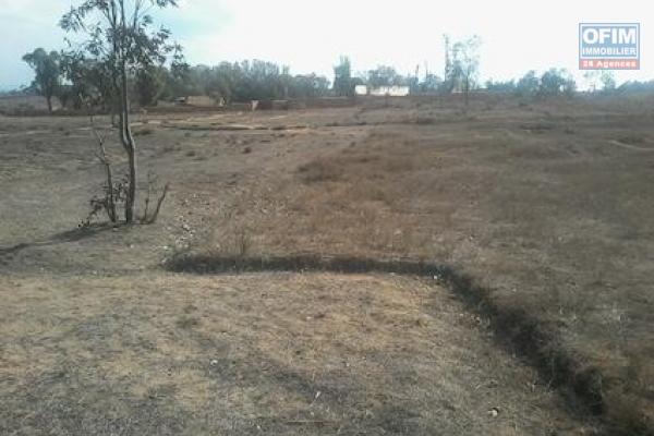 A vendre grand terrain plat et prêt à bâtir à Isahafa Lazaina