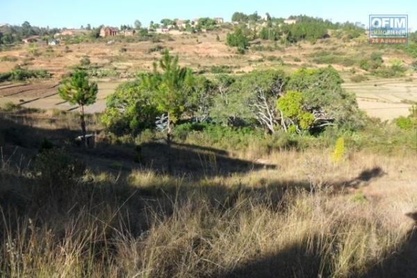 A vendre magnifique terrain en pente douce à Anosy Avaratra