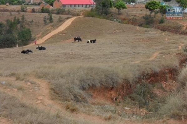 A vendre terrain de 8000 m2 à Amohijanaka Tsilazaina