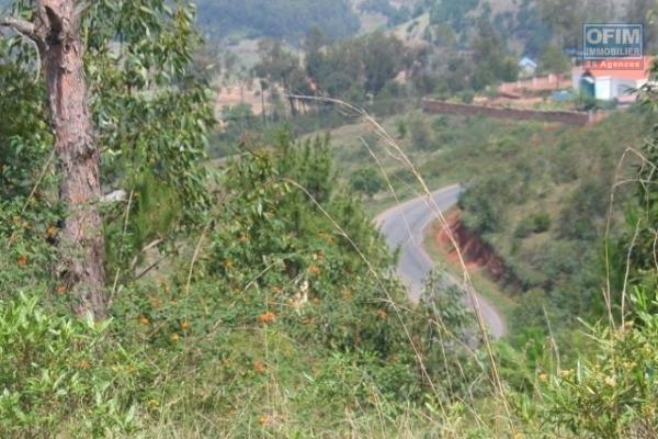 vente terrain de3 Ha à ambohimanga rova Tananarive