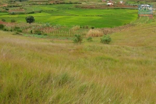 A vendre un terrain de 1000m 2 sise a Anjomakely