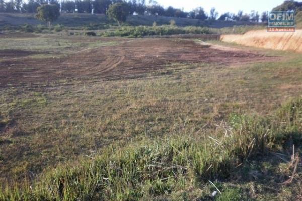 A vendre beau terrain de 22 000 m2 à ivato